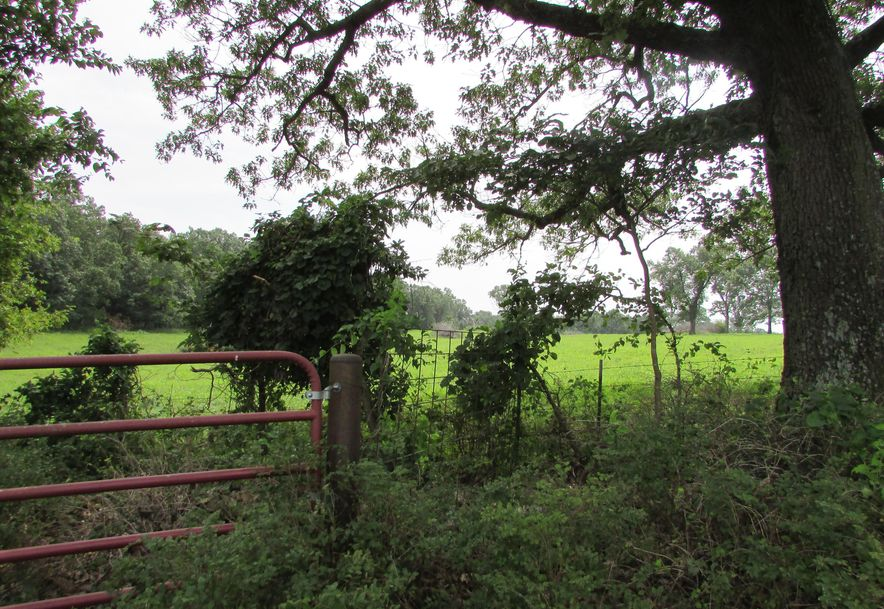 5364 County Road 30 Sarcoxie, MO 64862 - Photo 50
