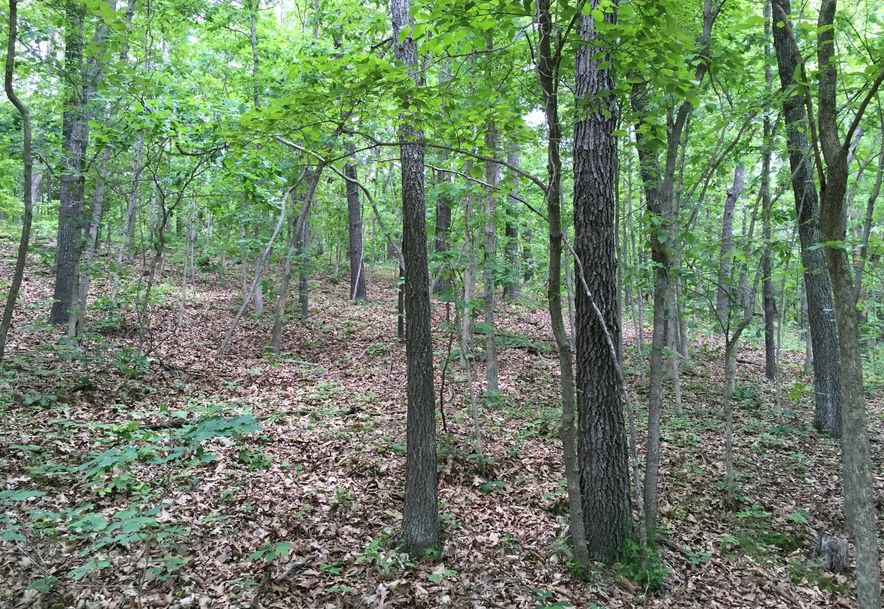 Lot # 84 North Woods Road Rogersville, MO 65742 - Photo 1