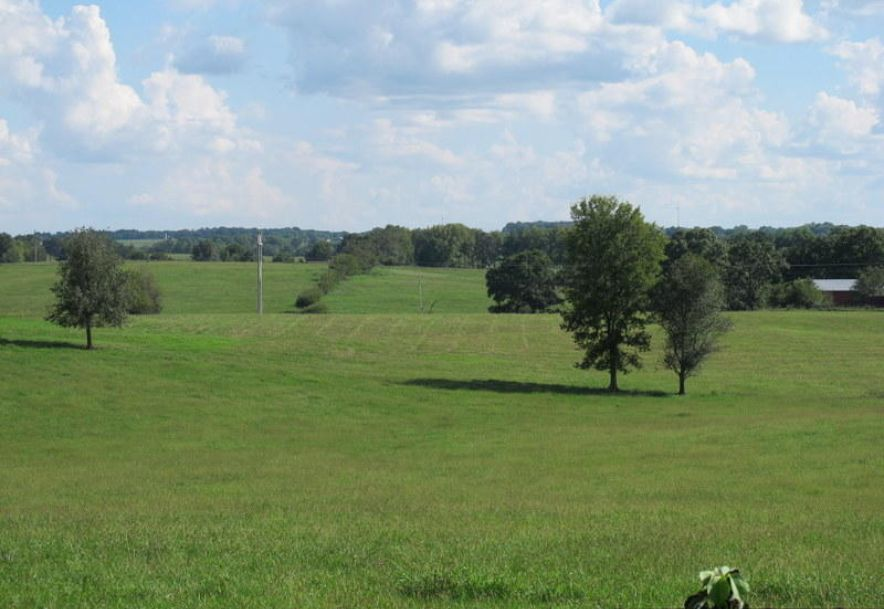 Tbd Tennessee Road Ozark, MO 65721 - Photo 4