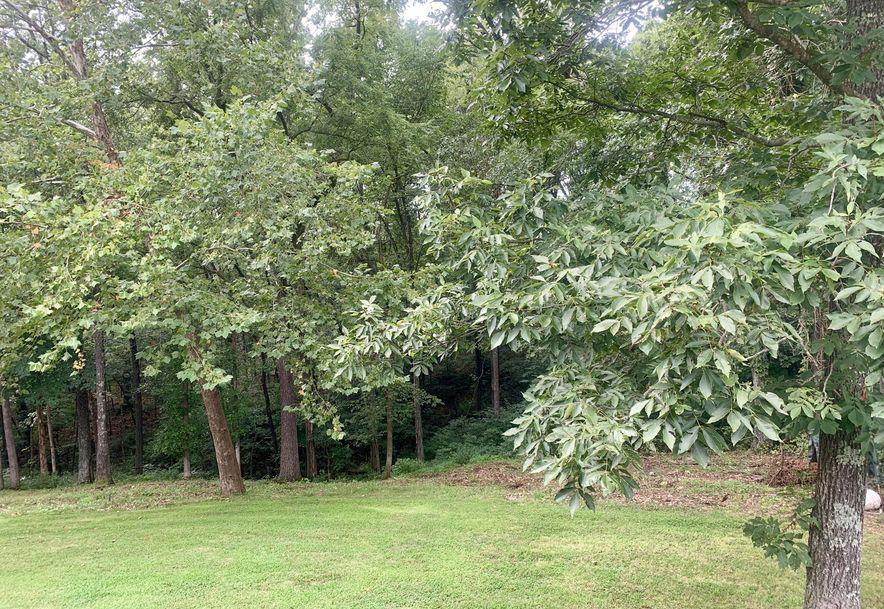 1381 N. East Ridge Dr. Strafford, MO 65757 - Photo 19