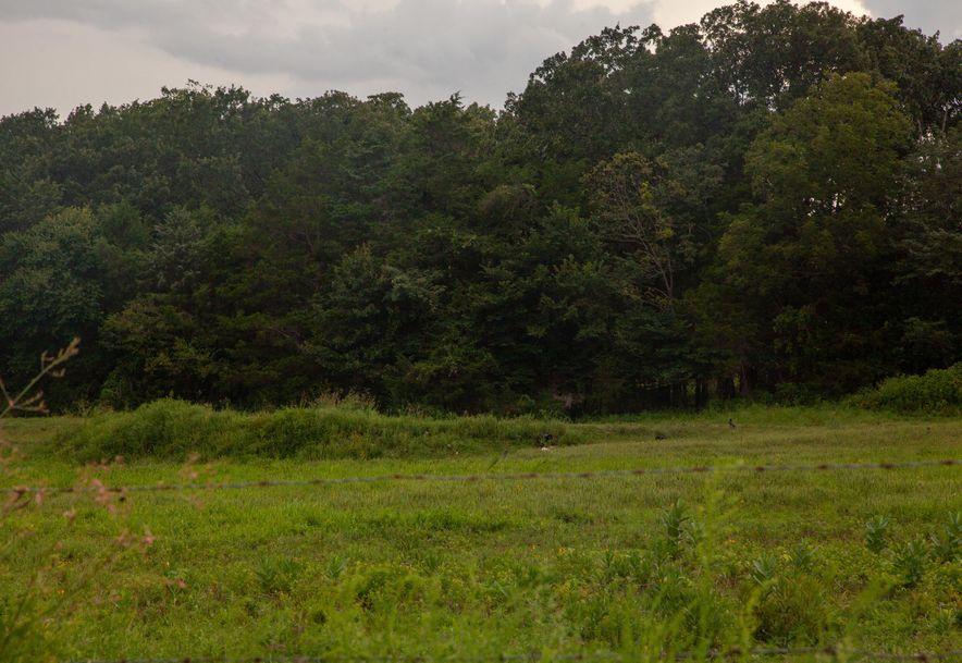 924 Plank School Road Marshfield, MO 65706 - Photo 31