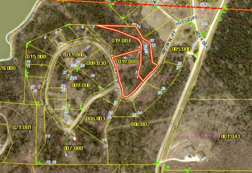 504 Virgin Bluff Drive Galena, MO 65656 - Photo 42