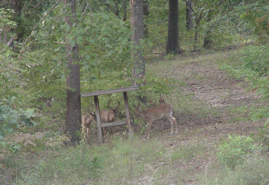 255 Shady Ridge Lane Fordland, MO 65652 - Photo 68
