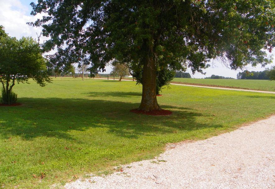 1679 Century Farm Road Fordland, MO 65652 - Photo 4