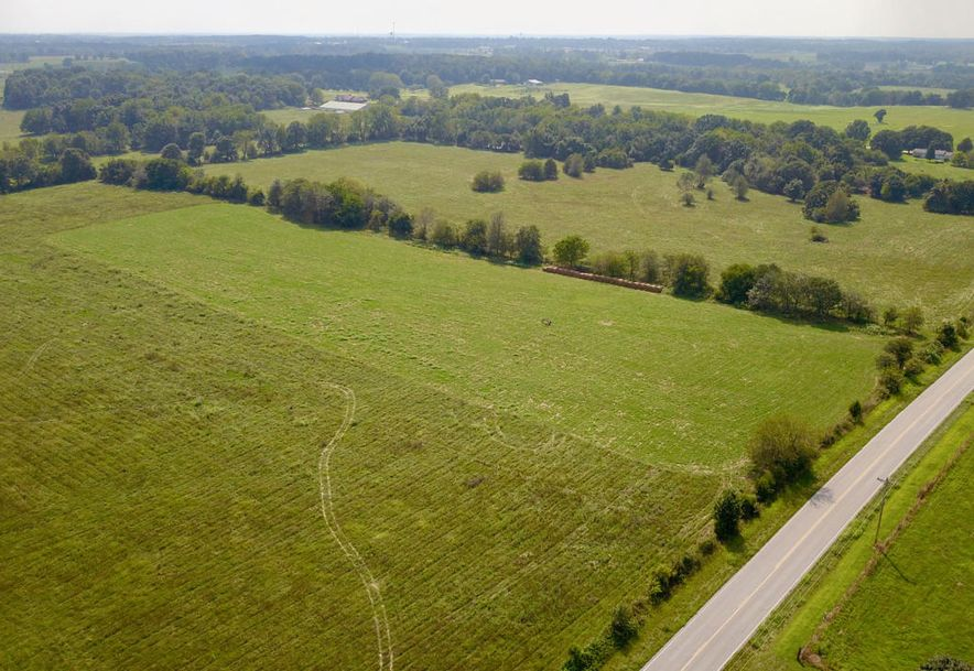 Lot #1 State Hwy Zz Clever, MO 65631 - Photo 1