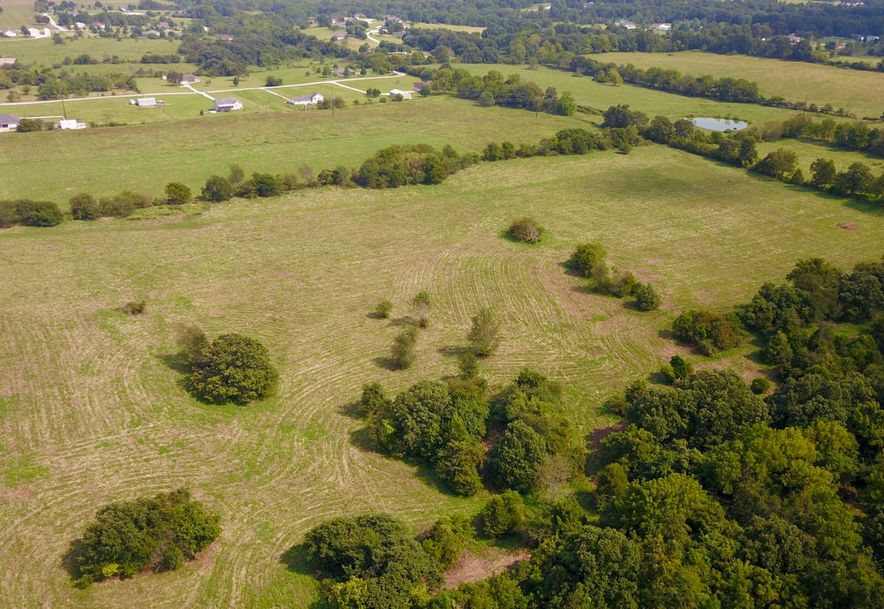 Lot #1 State Hwy Zz Clever, MO 65631 - Photo 11