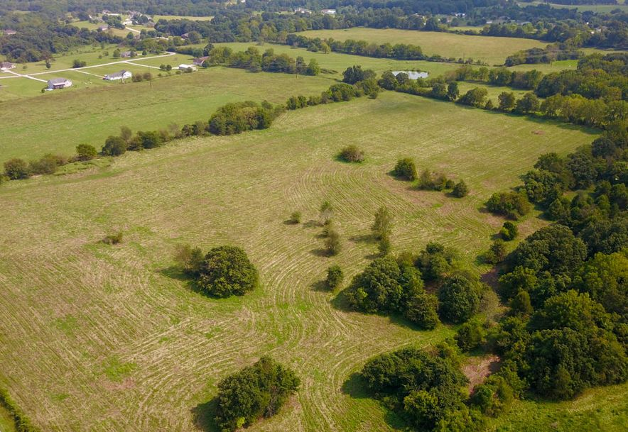 Lot #1 State Hwy Zz Clever, MO 65631 - Photo 13