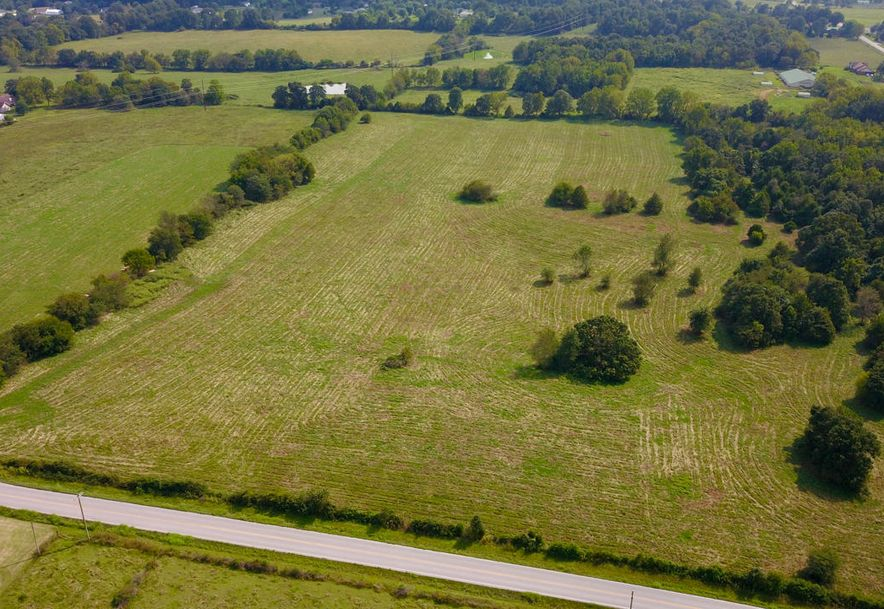 Lot #1 State Hwy Zz Clever, MO 65631 - Photo 15