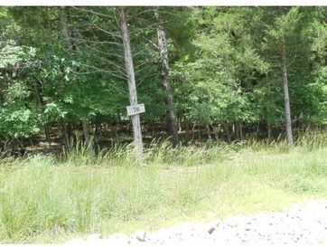 Lot 76 Twin Falls Court Saddlebrooke, MO 65630 - Image 1