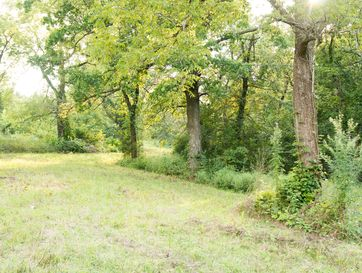 Tbd North Farm Rd 99 Willard, MO 65781 - Image 1