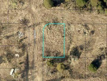 170 Bald Cypress (Lot 41) Court Hollister, MO 65672 - Image