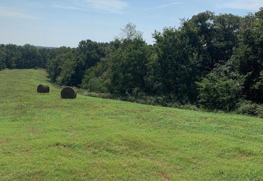 0 Old Missouri Road Pineville, MO 64856 - Photo 23