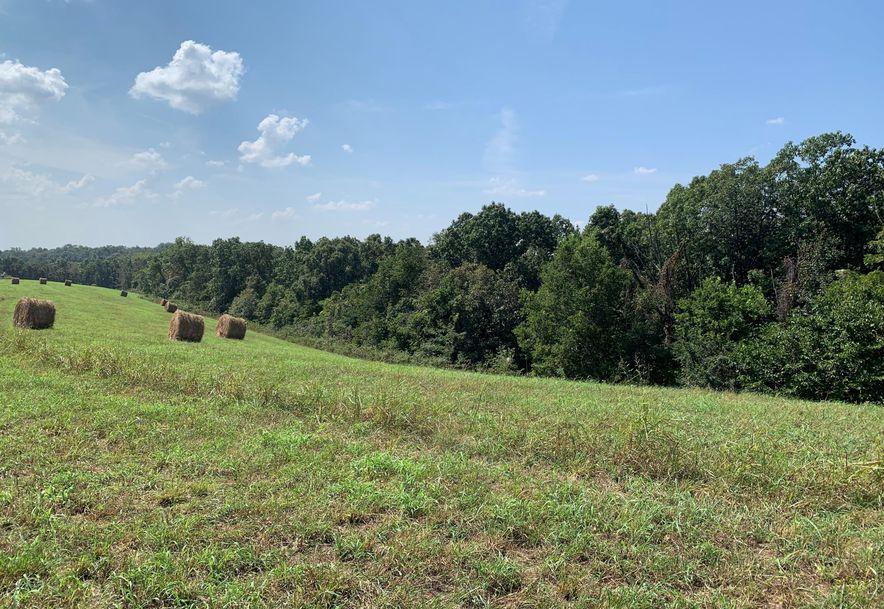 0 Old Missouri Road Pineville, MO 64856 - Photo 29