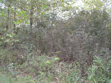 Xx Lot 7 Blk 11 Eastwind Loma Linda, MO 64804 - Image