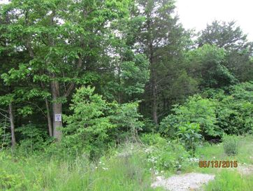 397 Shore Acres Dr. Powersite, MO 65731 - Image 1