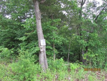 295 Shore Acre Dr. Drive Powersite, MO 65731 - Image 1