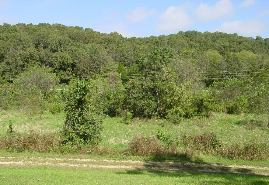 2709 Cave Springs Road Galena, MO 65656 - Photo 26