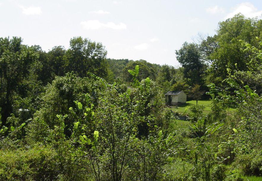 2709 Cave Springs Road Galena, MO 65656 - Photo 34