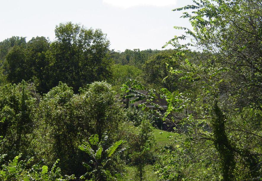 2709 Cave Springs Road Galena, MO 65656 - Photo 35