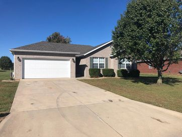517 Silver Leaf Lane Willard, MO 65781 - Image 1