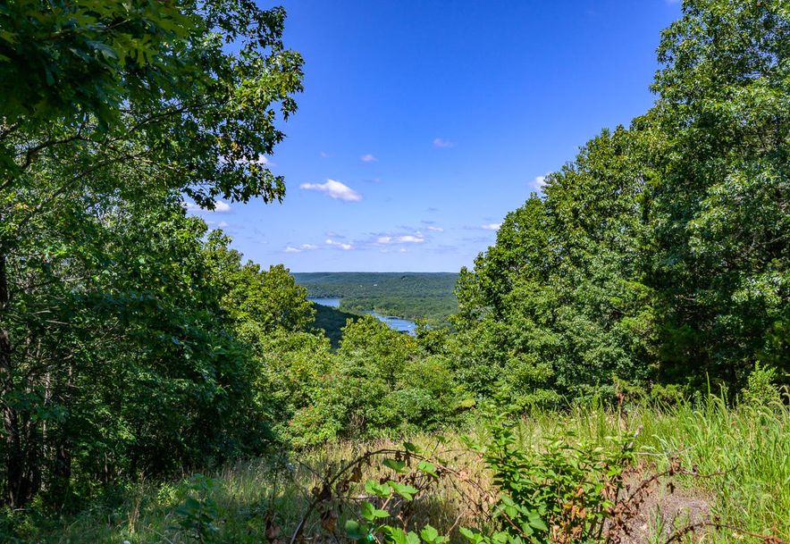 63 Acres State Hwy Y Galena, MO 65656 - Photo 23