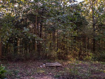 Photo of 22409 County Road 253
