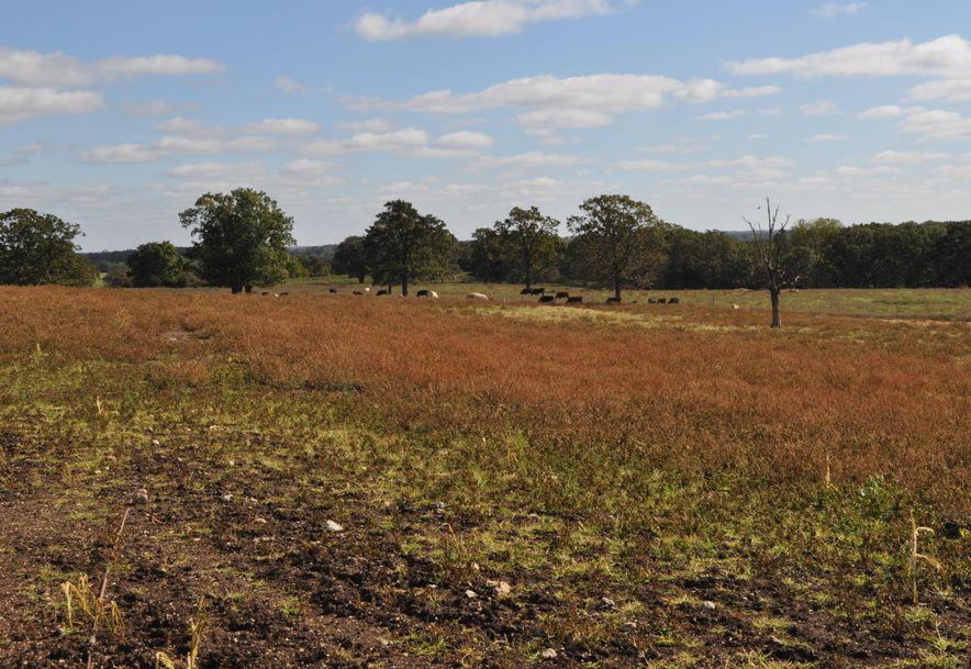 Tbd South 110th Road Flemington, MO 65650 - Photo 33