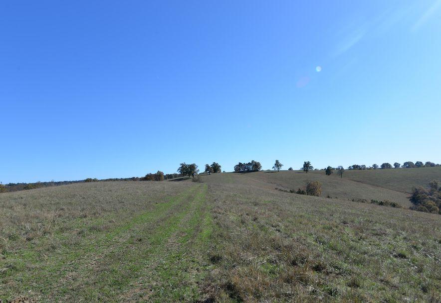 14075 Bee Creek Road Omaha, AR 72662 - Photo 59
