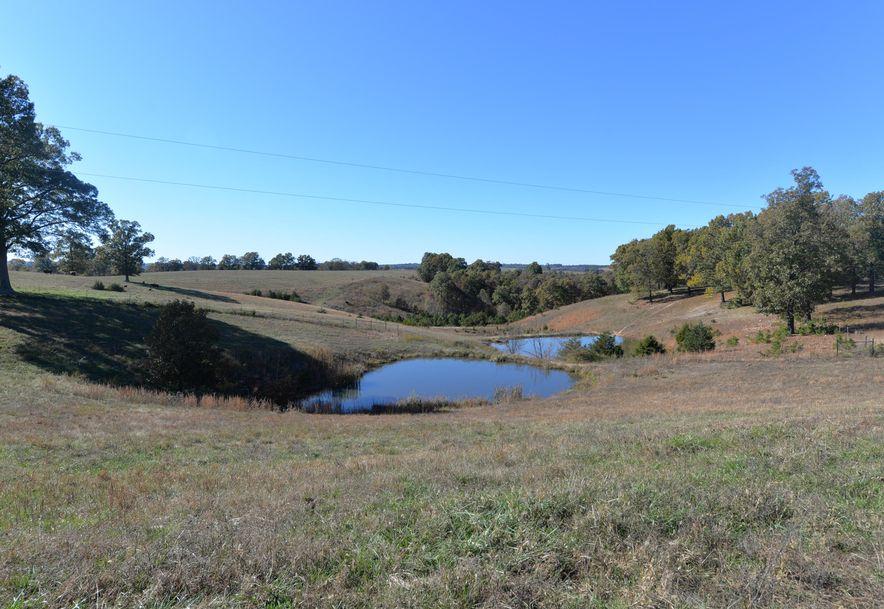 14075 Bee Creek Road Omaha, AR 72662 - Photo 60