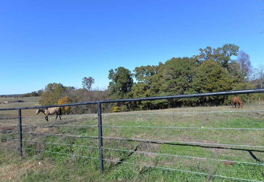 14075 Bee Creek Road Omaha, AR 72662 - Photo 64