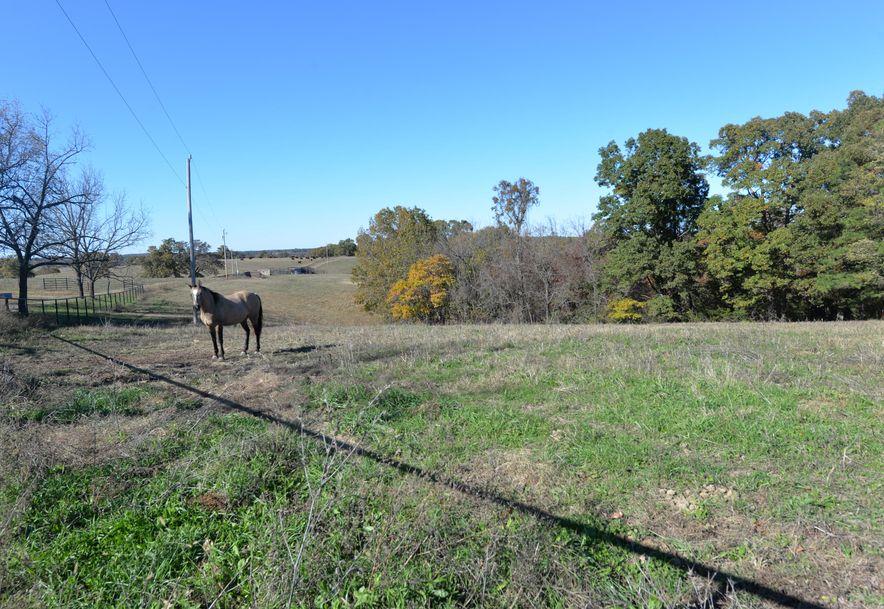 14075 Bee Creek Road Omaha, AR 72662 - Photo 65