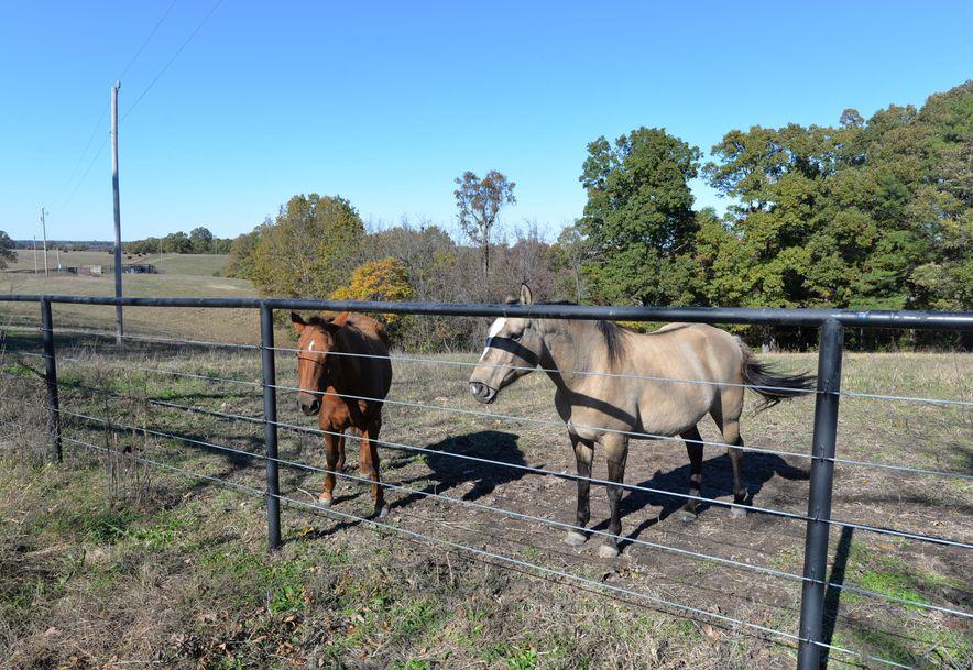 14075 Bee Creek Road Omaha, AR 72662 - Photo 67