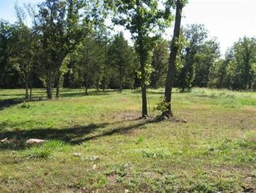 Lot 39 Black Bear Drive Saddlebrooke, MO 65630 - Image