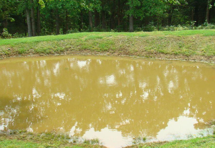 545 & 496 County Road 345 Caulfield, MO 65626 - Photo 60