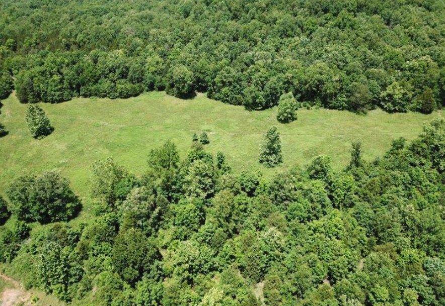 545 & 496 County Road 345 Caulfield, MO 65626 - Photo 75