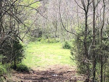 Tbd Lawrence 2133 Mt Vernon, MO 65712 - Image 1