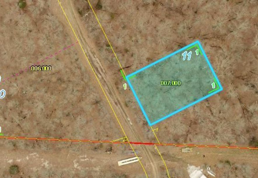Lot 11 Power Line Ln Galena, MO 65656 - Photo 1