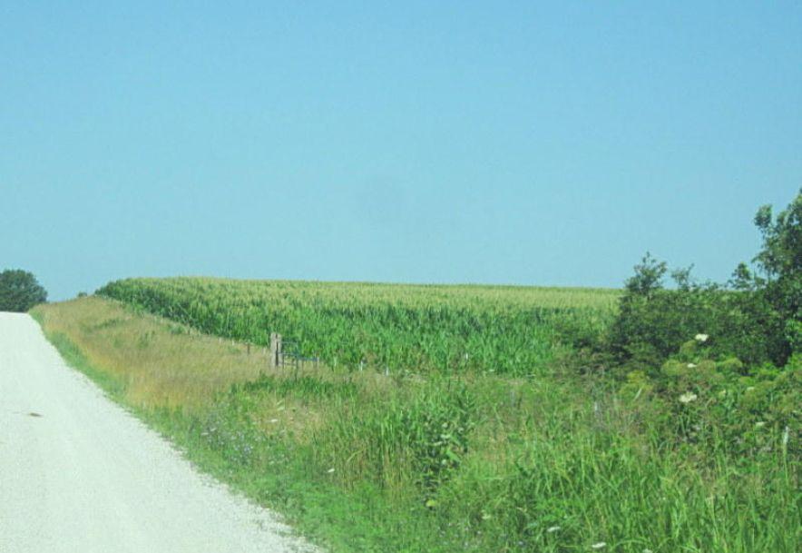 Tbd Highway 83 Flemington, MO 65650 - Photo 38