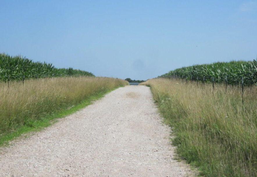Tbd Highway 83 Flemington, MO 65650 - Photo 39