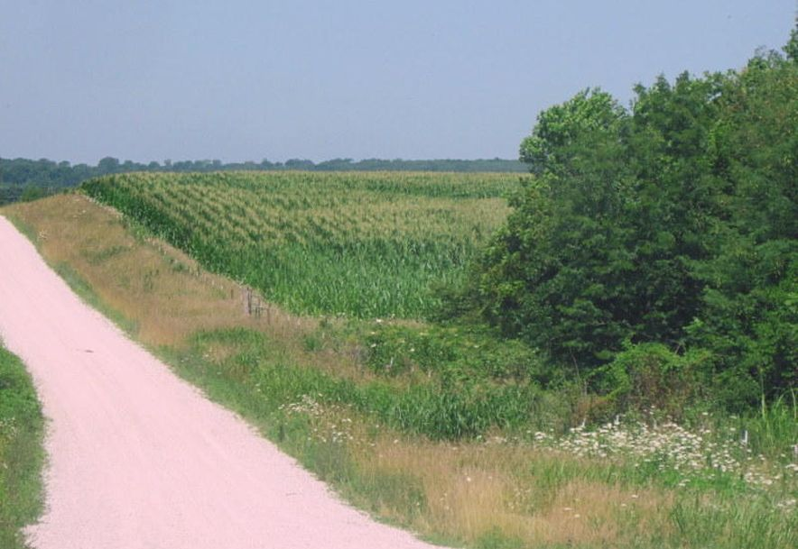 Tbd Highway 83 Flemington, MO 65650 - Photo 91