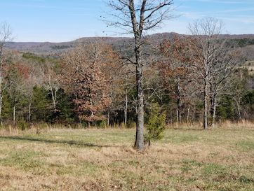 Lot 90 Forest View Saddlebrooke, MO 65630 - Image 1