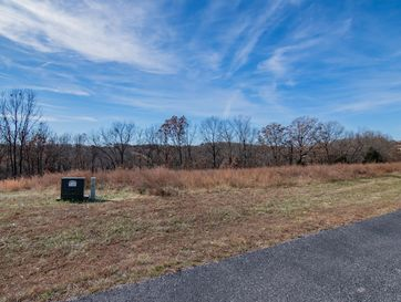 000 Hidden Springs Lane Reeds Spring, MO 65737 - Image 1