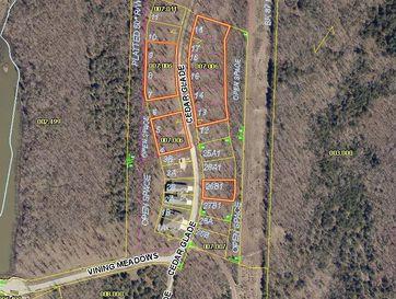 Tbd Cedar Glade Drive Reeds Spring, MO 65737 - Image 1