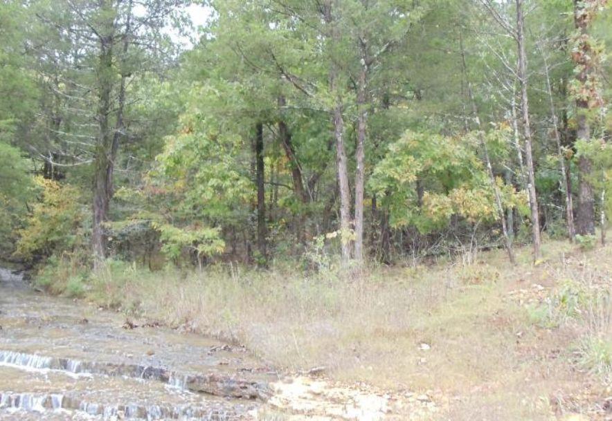 874 Creekside Terrace Saddlebrooke, MO 65630 - Photo 2