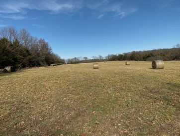 Tract 7 East Farm Rd 164 Rogersville, MO 65742 - Image