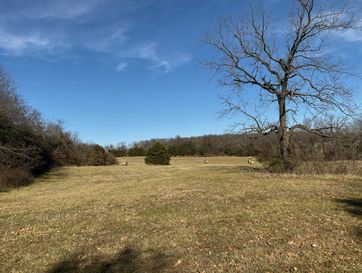 Tract 6 East Farm Rd 164 Rogersville, MO 65742 - Image