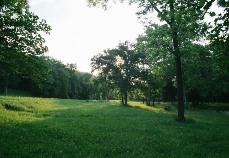 Lot 514 A Forest View Saddlebrooke, MO 65630 - Photo 31