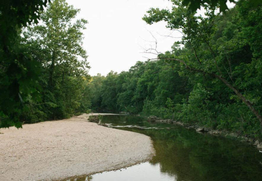 Lot 514 A Forest View Saddlebrooke, MO 65630 - Photo 34