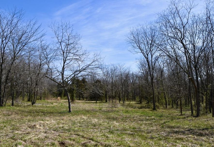 3546 North Farm Road 89 Willard, MO 65781 - Photo 2