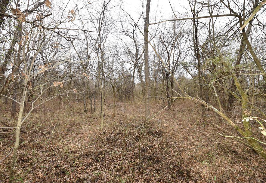 3546 North Farm Road 89 Willard, MO 65781 - Photo 6